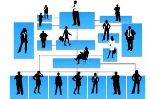 estructura organizativa empresa